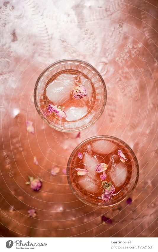 Roseneistee kalt Lebensmittel orange frisch Glas Getränk Tee Erfrischung Erfrischungsgetränk Limonade Kupfer Tablett Eiswürfel Rosenblätter Eistee
