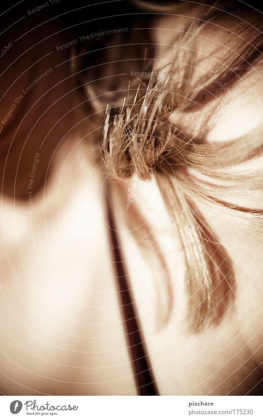 Hair schön Haare & Frisuren Haut Sommer feminin Frau Erwachsene blond pischare Offenblende Haarsträhne Farbfoto