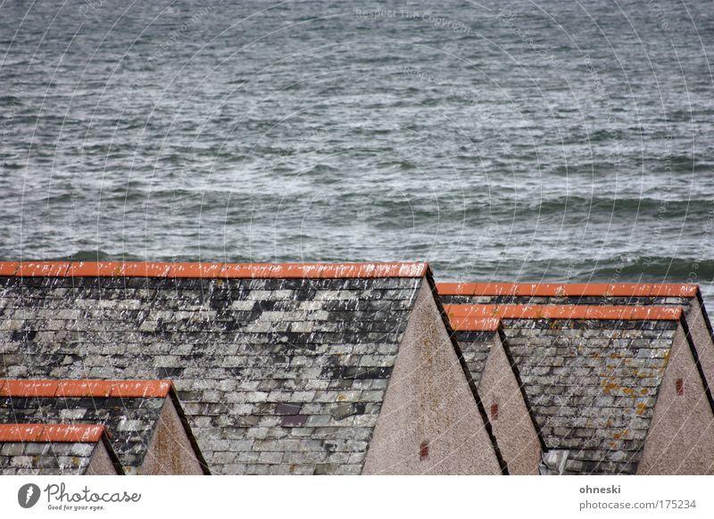Beschi§$ene Dächer Haus grau Gebäude Linie Architektur trist Dach Bauwerk Anordnung Kot Schottland Einfamilienhaus Hafenstadt Möwendreck