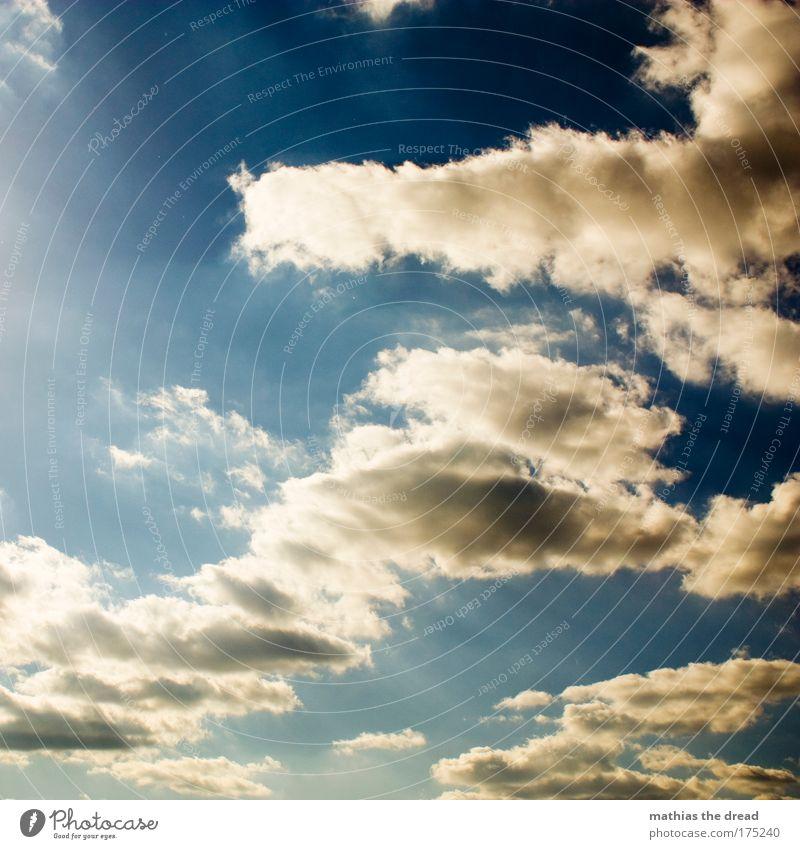 HIMMEL ÜBER BERLIN Himmel Natur Wasser schön blau Wolken Erholung Glück Umwelt Stimmung Luft hell Zufriedenheit elegant Energie ästhetisch