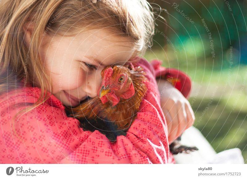 Fürsorglich Mädchen Kind Freude Kindheit Kindheitserinnerung Haare & Frisuren Haushuhn Tierliebe Küssen festhalten Sicherheit Geborgenheit Wärme Warmherzigkeit