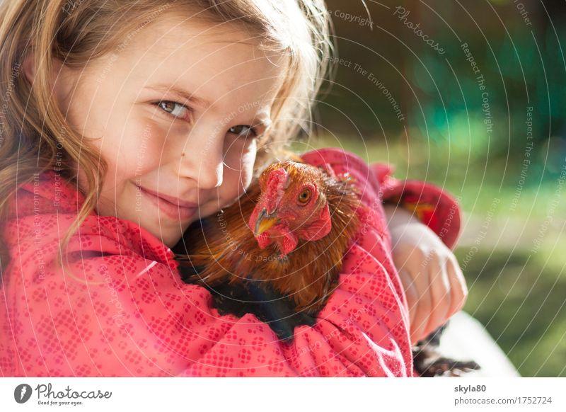 Beschützerinstinkt Mädchen Kind Freude Kindheit Kindheitserinnerung Haare & Frisuren Haushuhn Tierliebe Küssen festhalten Sicherheit Geborgenheit Wärme