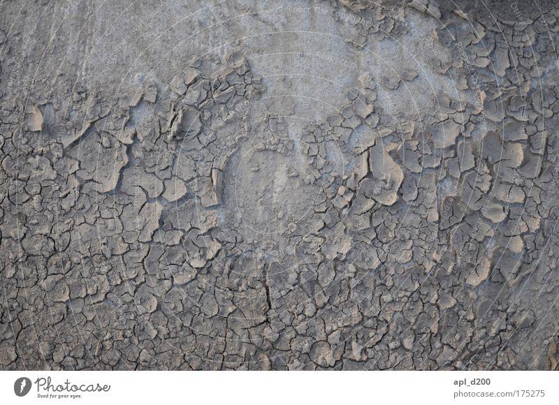 Nicht Nass Sonne Sommer grau Traurigkeit Feld dreckig Design Umwelt Erde ästhetisch Schmerz dehydrieren