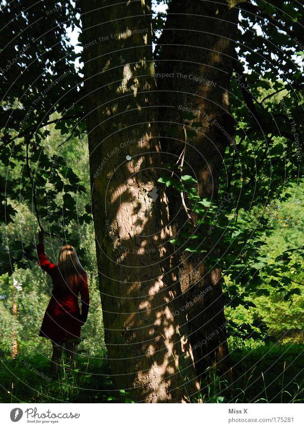 Rotkäppchen allein im Wald Farbfoto mehrfarbig Außenaufnahme Tag Dämmerung Schatten Sonnenlicht Blick nach hinten Wegsehen Ferien & Urlaub & Reisen Ausflug