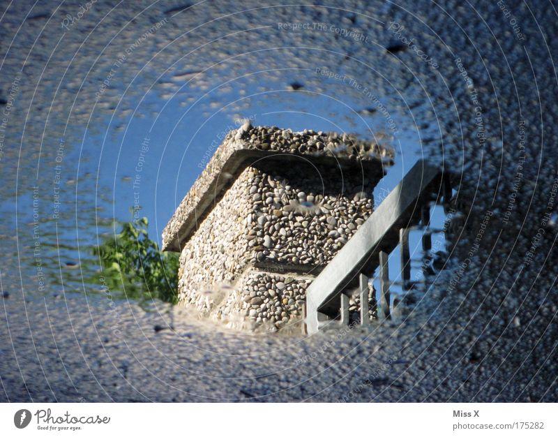 Spiegelung Wasser Himmel Haus Straße Garten Wege & Pfade Regen hell glänzend Wetter Wassertropfen Tor Gewitter Unwetter Schönes Wetter