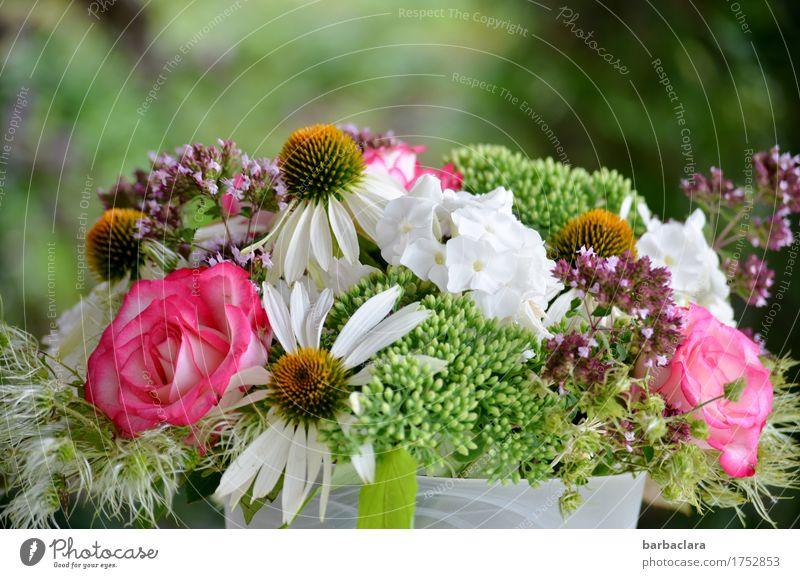 Blumenbouquet für Beate-Helena Häusliches Leben Geburtstag Natur Pflanze Sommer Rose Blüte Garten Blumenstrauß Vase frisch mehrfarbig Gefühle Stimmung Freude