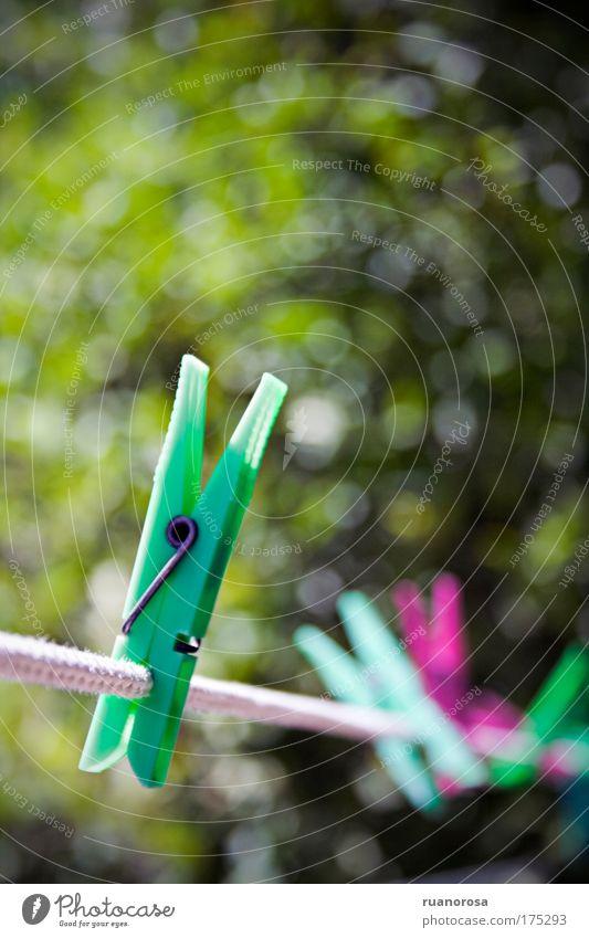 Farbfoto Detailaufnahme Menschenleer Tag Schwache Tiefenschärfe Kunststoff grün Wäscheklammern Zange Wäscheleine Seil Sonnenlicht Sommer