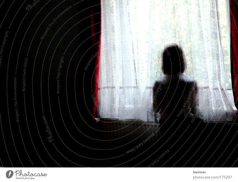Trauer Gedeckte Farben Innenaufnahme Textfreiraum links Tag Kontrast Silhouette Unschärfe Oberkörper Rückansicht Blick nach vorn Mensch feminin Rücken 1 Denken