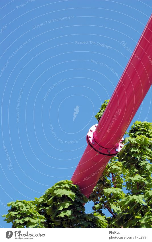 Falsch verlegt? blau grün Baum Pflanze rosa Energiewirtschaft außergewöhnlich Industrie Baustelle Schönes Wetter skurril Handwerk Eisenrohr Baumkrone Handwerker