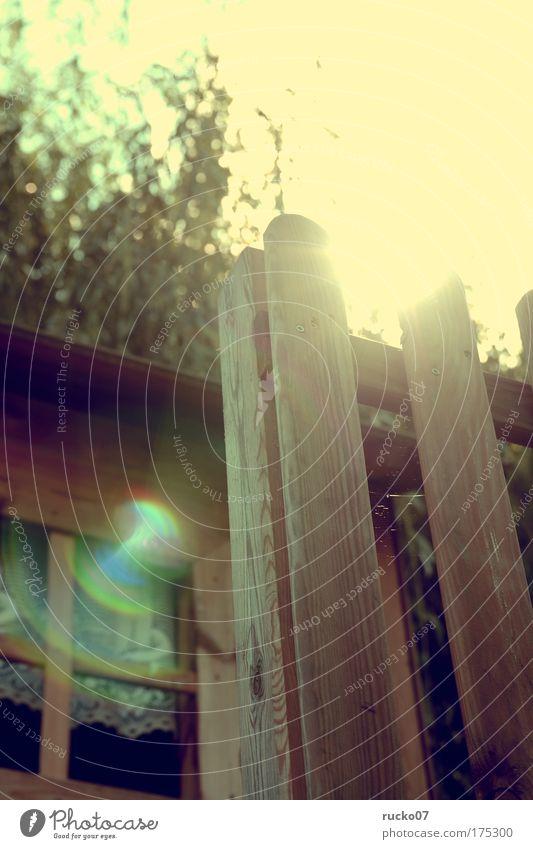Baumhaus Farbfoto Außenaufnahme Detailaufnahme Experiment Tag Licht Lichterscheinung Sonnenlicht Sonnenstrahlen Gegenlicht Schwache Tiefenschärfe