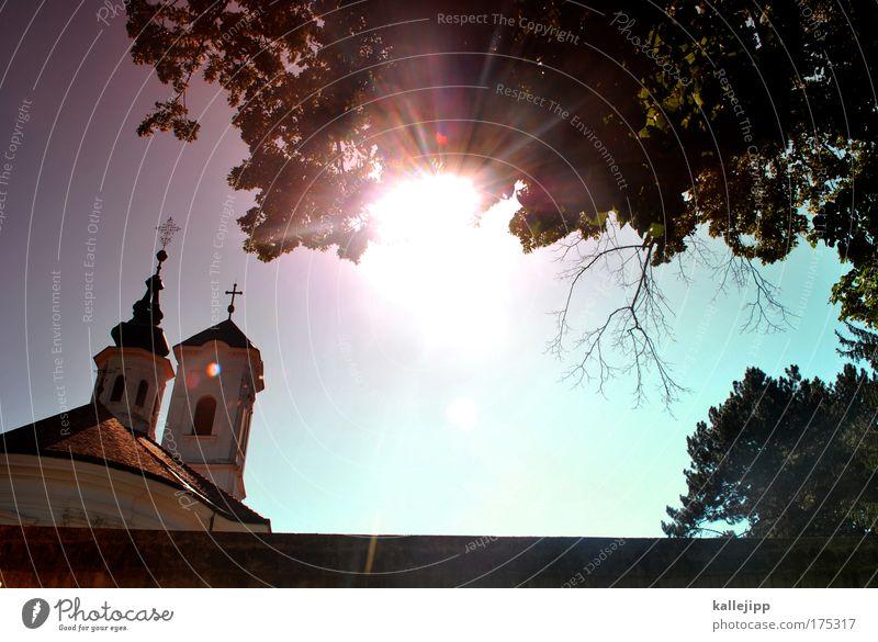 klosterfrau, melisse und ein bisschen geist Baum Pflanze Ferien & Urlaub & Reisen ruhig Blatt Tod Himmel (Jenseits) Religion & Glaube Architektur retro Kirche
