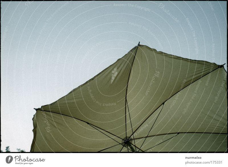 Hurra die Sonne ! Farbfoto Textfreiraum oben Morgen Sonnenlicht Sonnenstrahlen Freizeit & Hobby Erholung Ferien & Urlaub & Reisen Sommer Sommerurlaub Sonnenbad