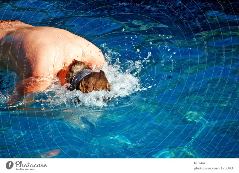 cool down Mensch blau Jugendliche Wasser Sommer Leben kalt Gefühle See Wellen Rücken Haut Schwimmen & Baden maskulin Coolness Schwimmbad