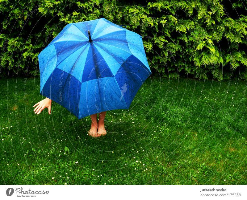 Nach dem Regen kommt die Sonne Hand grün Wiese Gras Mensch Wetter nass Natur Schutz Regenschirm Gewitter Geborgenheit Optimismus hocken schlechtes Wetter