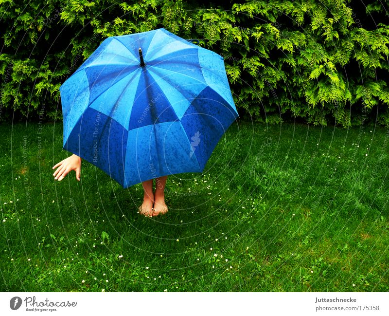 Nach dem Regen kommt die Sonne Schirm Regenschirm aufspannen Wetter aufgespannt Schutz schützen schlechtes Wetter Optimismus Hand Bein Fuß Gras Wiese