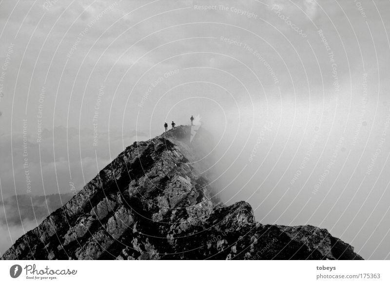 Verschlungen Natur Ferien & Urlaub & Reisen Wolken Berge u. Gebirge Felsen Nebel wandern Alpen Gipfel Klettern Bayern Bergsteigen bedeckt verdeckt verschlingen