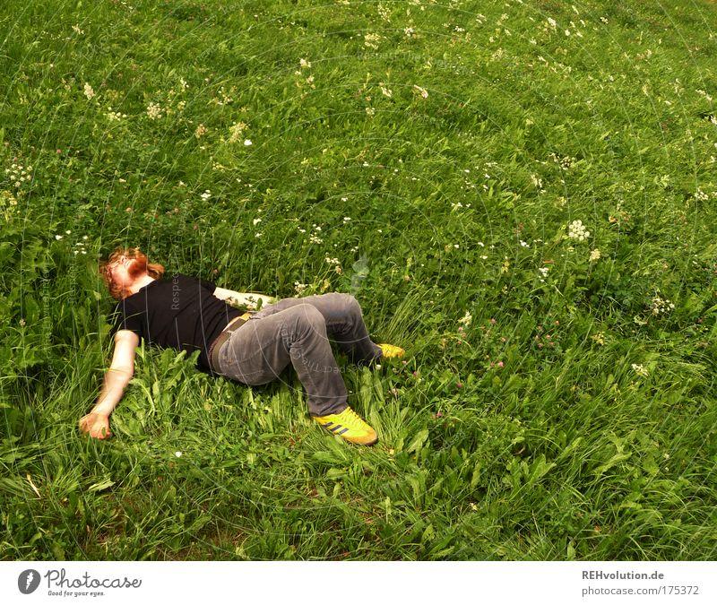 Er liegt schon eine ganze Weile hier. Mensch Jugendliche Freude ruhig Einsamkeit Erholung Wiese Glück Zufriedenheit Erwachsene maskulin 1 Mann frei schlafen