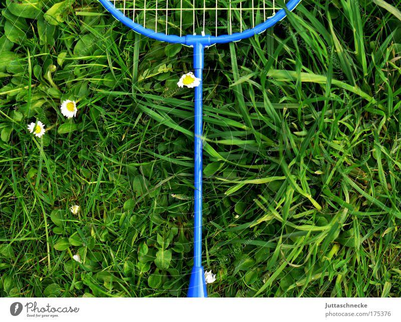 Zu heiß zum Spielen Freude Wiese Spielen Gras Netz vergessen Badminton ausgemustert