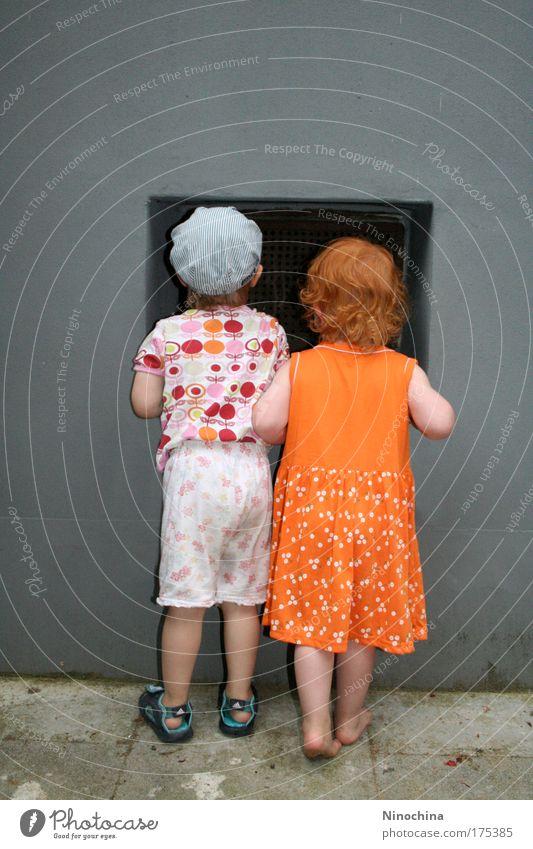 Beste Freunde Mensch Freude Mädchen Fenster Kind Wand Junge Mauer Spielen Stein Familie & Verwandtschaft Freundschaft Kindheit Rücken beobachten niedlich