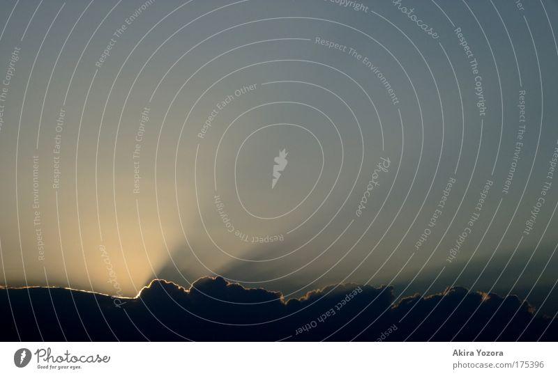 Wegweiser Farbfoto Außenaufnahme Detailaufnahme Menschenleer Textfreiraum links Hintergrund neutral Abend Dämmerung Silhouette Lichterscheinung Sonnenlicht