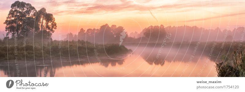 Natur Ferien & Urlaub & Reisen Sommer grün Wasser Baum Landschaft rot Wald Herbst Tourismus Nebel frisch Ausflug Abenteuer Fluss