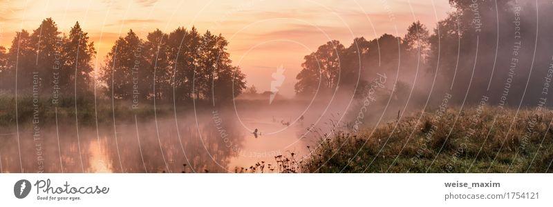 Nebeliger Fluss morgens Ferien & Urlaub & Reisen Sommer Tapete Natur Landschaft Himmel Sonnenaufgang Sonnenuntergang Herbst Baum Wald See frisch grün weiß
