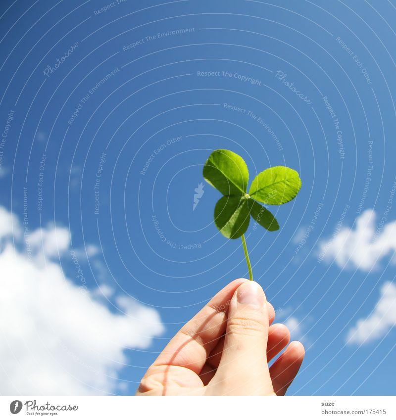 Glücksbringer Hand Finger Umwelt Natur Himmel Wolken Pflanze Klee Kleeblatt Zeichen festhalten Fröhlichkeit blau grün Vorfreude Erfolg Lotterie Glücksklee