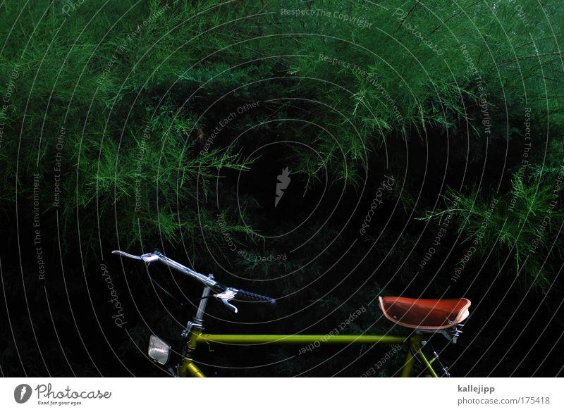 fahrt ins grüne Natur Baum Pflanze Tier Blatt Umwelt Landschaft Garten Park Fahrrad Feld Klima Freizeit & Hobby Verkehr Lifestyle Sträucher