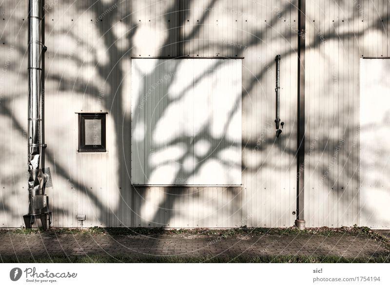 Fassade Natur Baum Industrieanlage Mauer Wand Fenster Dachrinne Schornstein authentisch grau schwarz silber weiß Gedeckte Farben Außenaufnahme Menschenleer