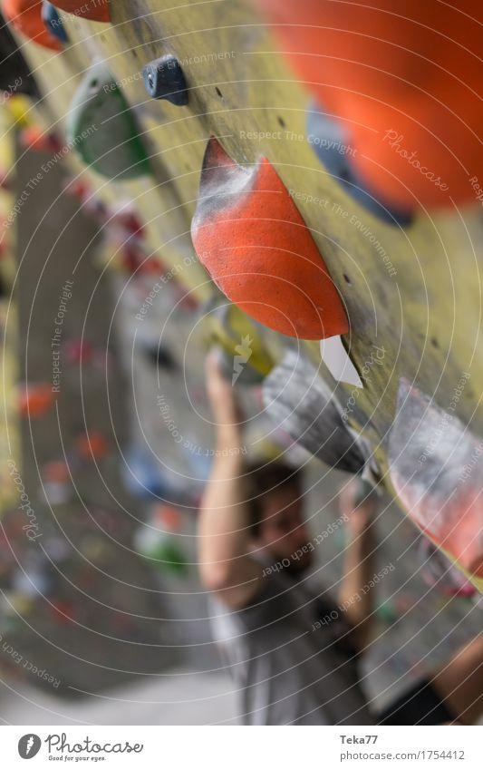 In der Boulderhalle Freizeit & Hobby Sport Fitness Sport-Training Klettern Bergsteigen Mensch Hand Mauer Wand Abenteuer ästhetisch Stress Farbfoto Innenaufnahme