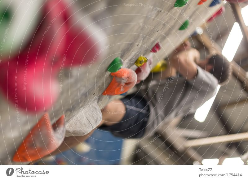 In der Boulderhalle #2 Freizeit & Hobby Sport Fitness Sport-Training Klettern Bergsteigen Mensch Hand Mauer Wand Abenteuer ästhetisch Stress Innenaufnahme