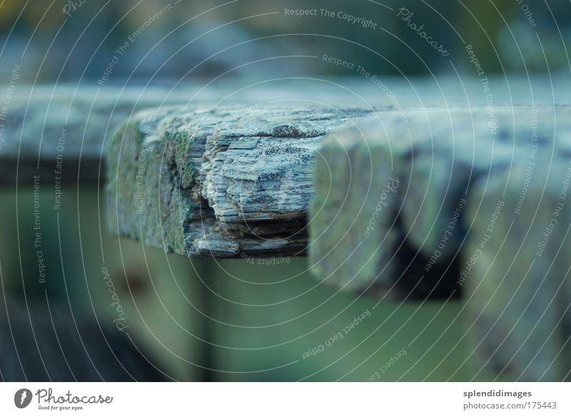 Alter Balken Farbfoto Gedeckte Farben Außenaufnahme Makroaufnahme Schwache Tiefenschärfe Natur Holz alt nass Vergänglichkeit Wandel & Veränderung kalt Holzbrett