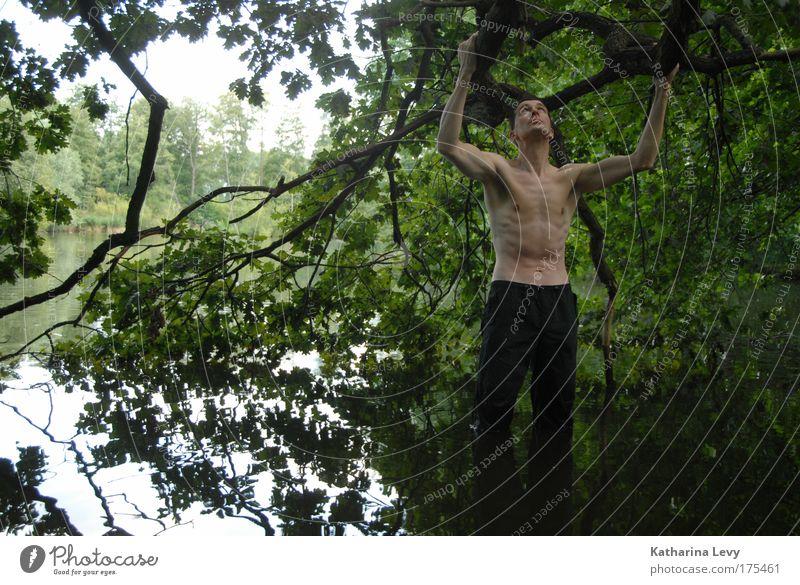 sichtfenster Mensch Mann Natur Wasser Baum Sommer Einsamkeit Leben Freiheit See Zufriedenheit warten Erwachsene maskulin Abenteuer stehen