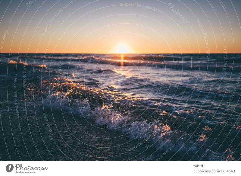 Sunset Natur Landschaft Urelemente Wasser Wassertropfen Himmel Wolkenloser Himmel Horizont Sonne Sonnenaufgang Sonnenuntergang Schönes Wetter Wellen Küste