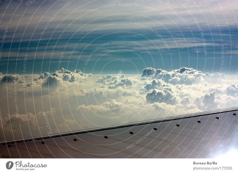 Träumerei Außenaufnahme Luftaufnahme Menschenleer Tag Himmel Wolken Sonne Stimmung Flugzeug Luftverkehr blau weiß Tragfläche fliegen Freiheit Unendlichkeit