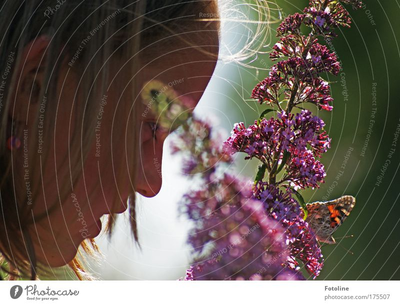 Hallo Schmetterling! Farbfoto mehrfarbig Außenaufnahme Tag Sonnenlicht Froschperspektive Profil Mensch feminin Kind Mädchen Kopf Haare & Frisuren Gesicht Ohr