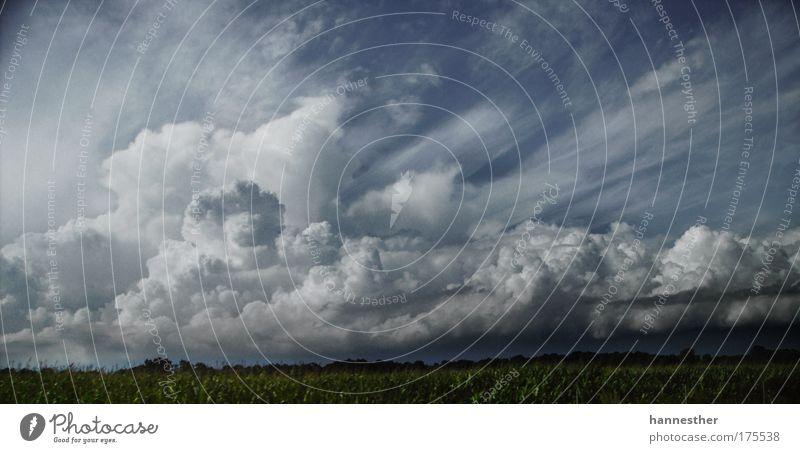 es wird regen geben Himmel grün blau Sommer Ferien & Urlaub & Reisen Wolken grau Landschaft Feld Wind Wetter fahren Unwetter Respekt Fernweh Gewitterwolken
