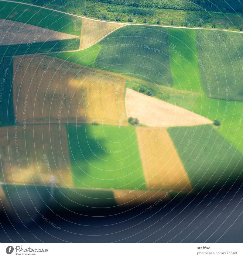 4-Felder-Wirtschaft Farbfoto Außenaufnahme Luftaufnahme Textfreiraum unten Tag Schatten Vogelperspektive Landschaft Sommer Getreide Getreidefeld Getreideernte