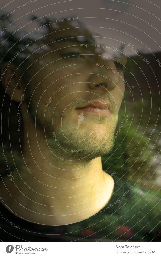 O Brother Mensch Jugendliche ruhig Erwachsene Einsamkeit Gesicht Ferne Fenster Gefühle Kopf Traurigkeit träumen Stimmung Glas warten maskulin