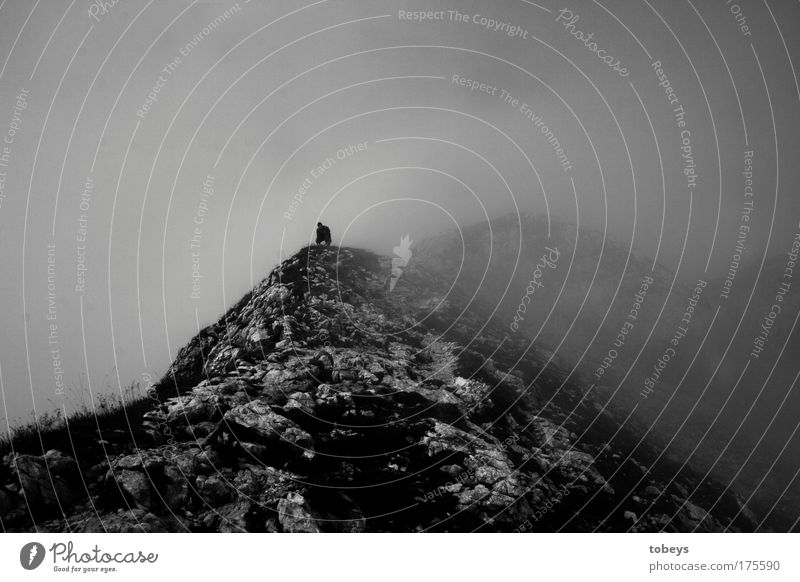kein Laut Natur Landschaft Luft Hügel Felsen Alpen Berge u. Gebirge Gipfel Vulkan dunkel Nebel Einsamkeit Stillleben ruhig wandern Bergsteigen Allgäu Klettern