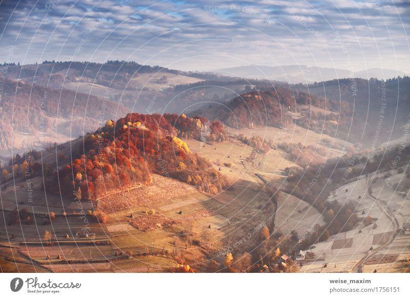 Sonniger Morgen im November in den Bergen. Himmel Natur Ferien & Urlaub & Reisen Pflanze blau schön Baum Landschaft rot Wolken Blatt Haus Ferne Wald