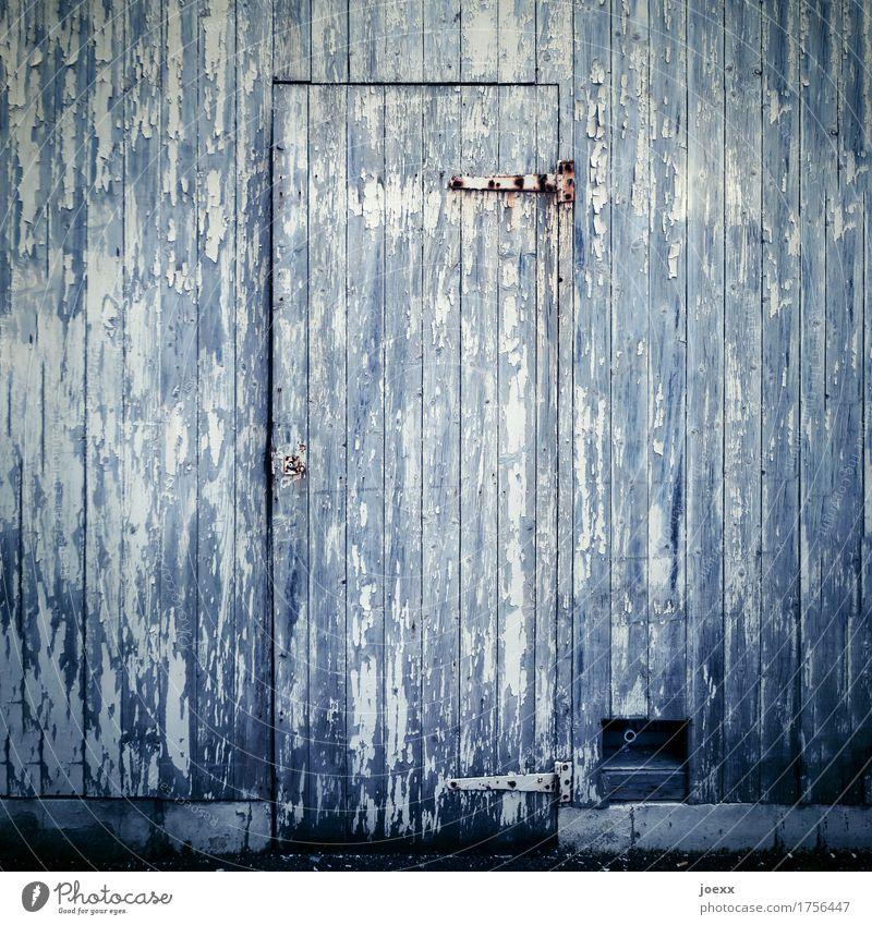 Vintage Fassade Tür Holz alt grau weiß Verfall verwittert Holztür Scharnier Farbfoto Gedeckte Farben Außenaufnahme Nahaufnahme Menschenleer Tag