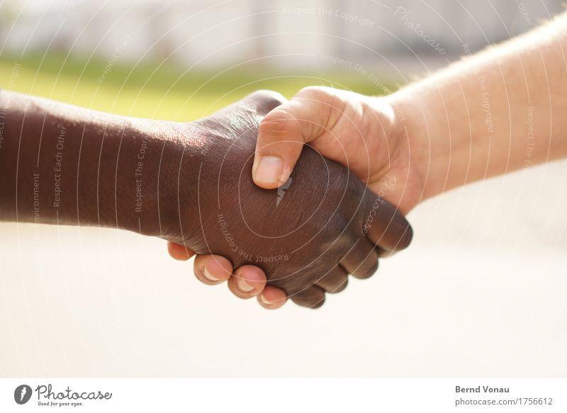 willkommen Mensch Jugendliche Hand 18-30 Jahre Erwachsene braun Freundschaft maskulin Finger berühren fest Partnerschaft Europäer Verschiedenheit Griff