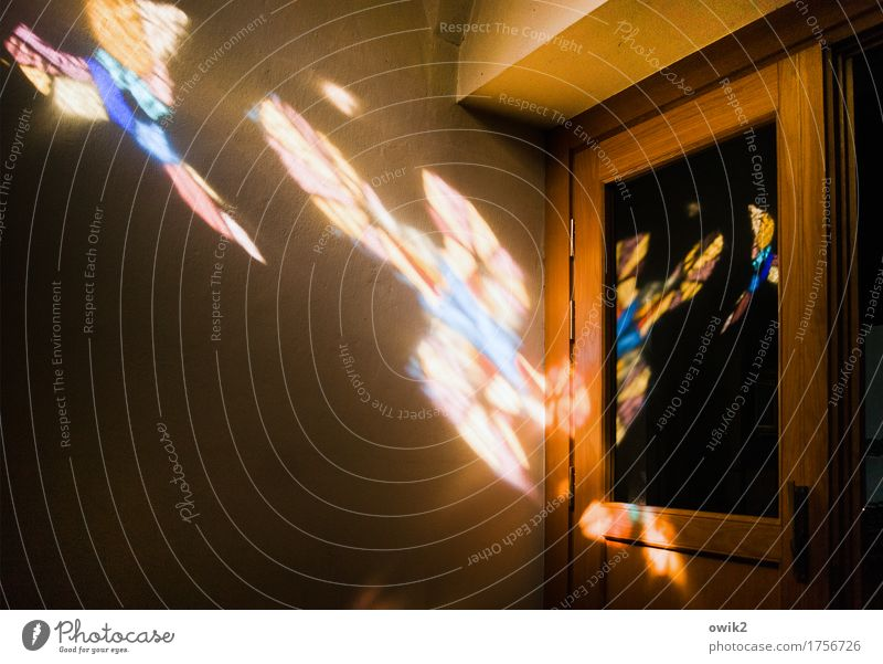 Liebfrauenkirche Kirche Kirchentür Kirchenfenster Lichteinfall Buntfenster Buntglas Buntglasfenster Mauer Wand Tür hell Religion & Glaube Katholizismus