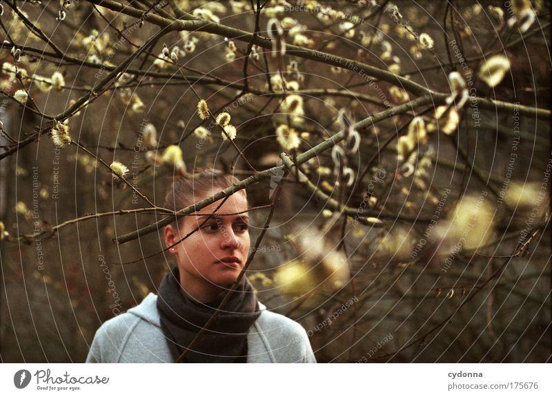 Frühling Frau Mensch Natur Jugendliche schön Baum Einsamkeit ruhig Gesicht Erwachsene Leben Umwelt Gefühle Freiheit Bewegung Traurigkeit