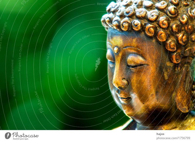 buddha in trance alt gr n ein lizenzfreies stock foto von photocase. Black Bedroom Furniture Sets. Home Design Ideas