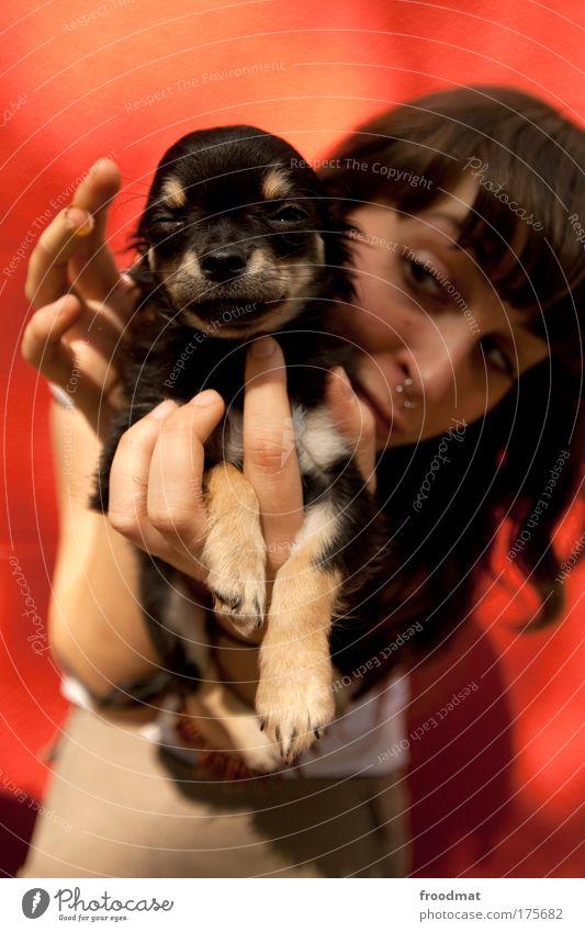 findelkind ;) Farbfoto mehrfarbig Außenaufnahme Tag Schwache Tiefenschärfe Weitwinkel Porträt Tierporträt Blick in die Kamera Mensch feminin Frau Erwachsene 1