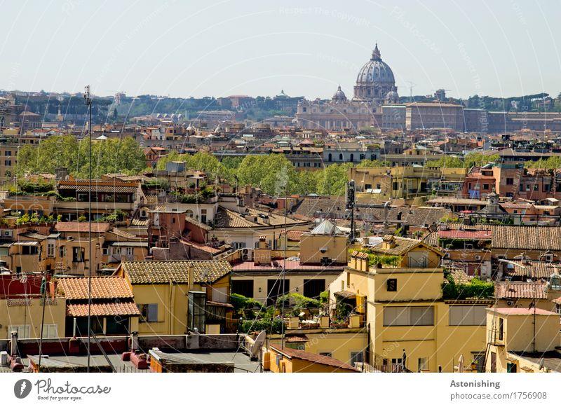Rom mit Petersdom Himmel Natur Stadt alt Pflanze blau Baum Haus Fenster Reisefotografie Umwelt gelb Wand Mauer Stein Fassade