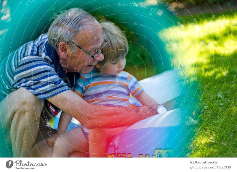 Sommererinnerung Mensch Natur Mann alt Freude Erwachsene Umwelt Senior Wiese Spielen klein Glück Garten Zusammensein maskulin