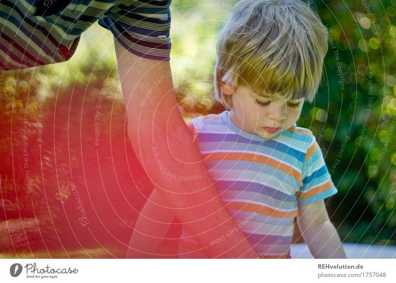 konzentration im sommer Mensch Kind Frau Natur Mann Sommer Erwachsene Umwelt Senior natürlich Junge Familie & Verwandtschaft Spielen klein Glück Garten